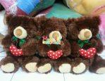 Bear love 12in